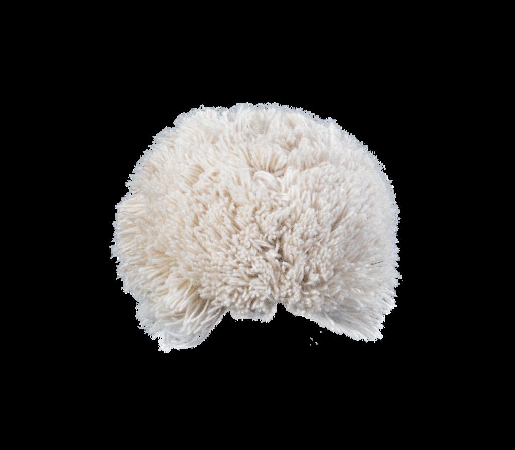 Bommel Liebenau (Wolle ecru 113)
